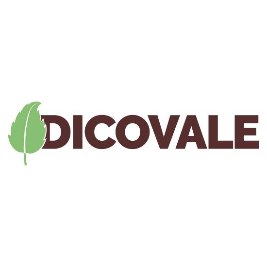 Logo Dicovale